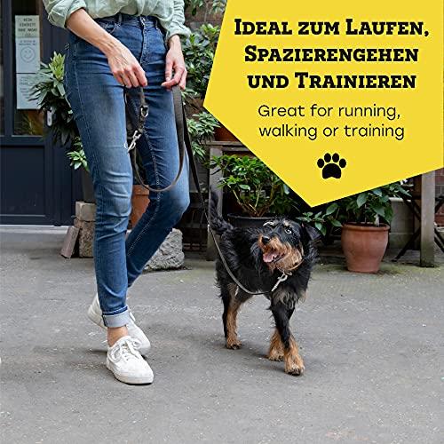 VITAZOO Premium Hundeleine in Graphitschwarz, massiv und verstellbar in 4 Längen (1,1 m – 2,1 m), für große und kräftige Hunde | 2 Jahre Zufriedenheitsgarantie | Hundeführleine, Doppelleine, geflochten - 6