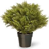 National Tree Company Artificial...