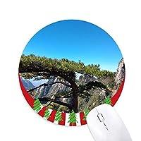 松の木 円形滑りゴムのマウスパッドクリスマス飾り