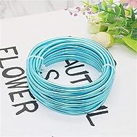 AMIMIアルミニウムワイヤークラフト曲げることができる複数の光沢のある色5m / 16.4ft家具用盆栽ツリートレーニングワイヤー直径1mm,Lake blue