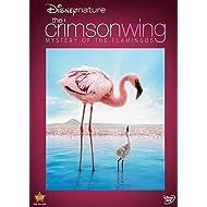 Disneynature: The Crimson Wing - Mystery of Flamingos