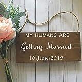 Etiqueta engomada del tablero de la señal de la boda del perro mascota Mi humano se va a casar Etiqueta de la pared del vinilo Etiqueta engomada de la fecha de la boda personalizada-42x23cm