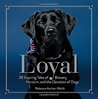 Best loyal heart puppy rescue Reviews