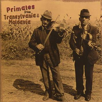 Primates from Transylvania & Moldavia