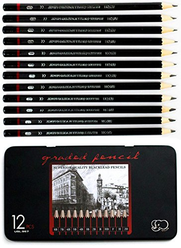 Professional Sketch and Drawing pencils set,Art Pencil(8B-2H). (12-Count)