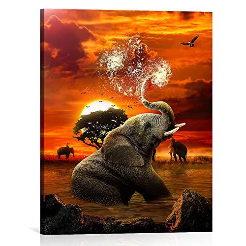 Bold And Brash Afrika Elefant kunstdrucke auf Leinwand bilder für Wohnzimmer, Tier Elefant spritzt Wasser Afrikanischer Sonnenaufgang Natur-Landschaft Modern Wanddekoration Schlafzimmer 30x40cm