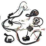 Complete Wiring Harness Electrics Stator Coil CDI for 4 Stroke ATV 150cc -250cc Quad Bike Buggy Go Kart Pit Dirt Bikes