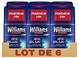 Williams Expert Déodorant Homme Stick Antibactérien, Fraîcheur 24h, Anti-Traces Blanches, Formule Testée Dermatologiquement (Lot de 6x75ml)