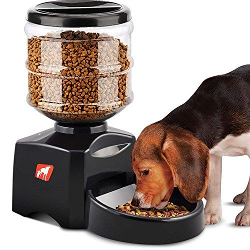 Madisun Futterautomat Katze, Automatischer Futterspender für Katze und Hunde, Futterautomat Programmierbar mit Timer/LCD Bildschirm/Ton-Aufnahmefunktion, 5.5 L