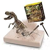 VIBIRIT Dig Up Dinosaurs Skeleton Set,Dinosaur Digging Fossil Kit Model Toys Educational Realistic Toys for Kids,Boys,Girls
