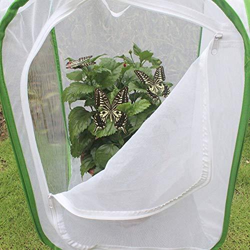 Leftwei 60 x 60 x 90 cm belüfteter Insektenkäfig, Faltbarer Insektenkäfig, zusammenklappbar Hilfreiche belüftete Gartenpflanzenhausinsekten