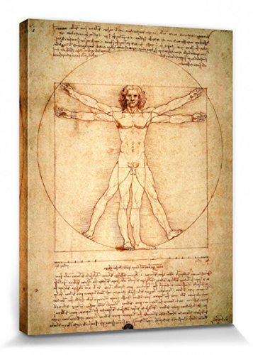 1art1 Leonardo Da Vinci - El Hombre De Vitruvio, 1490 Aprox. Cuadro, Lienzo Montado sobre Bastidor (40 x 30cm)