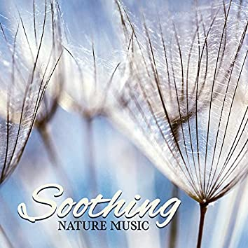 Soothing Nature Music – Calm Sounds of Nature, Peaceful Mindfulness, Spiritual Healing, Headache Relief, Relaxing Meditation Music