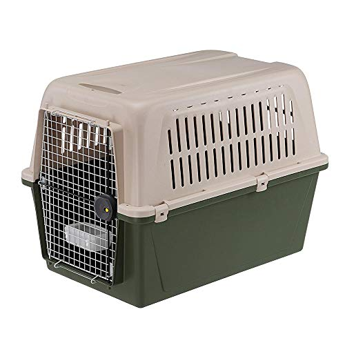 Ferplast 73059021 Transportbox Atlas Classic für Hunde, Maße 91 x 61 x 66,5 cm, grün