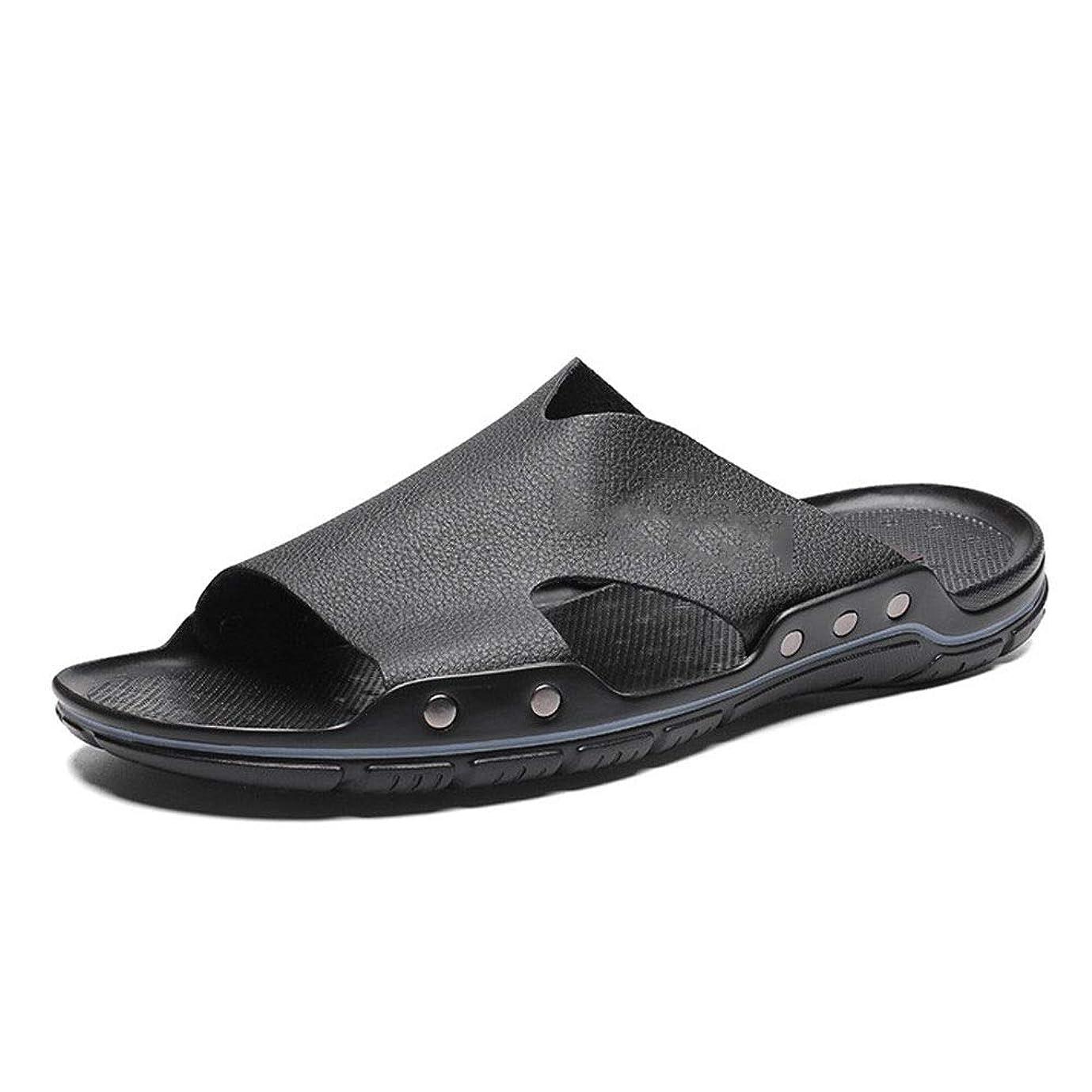 プライバシーカーペットマティスサンダル メンズ 本革 オフィス メンズビーチシューズ夏ワタリの靴軽量通気性、ソフトノンスリップサンダル ビーチ スポーツ スリッパ (Color : Black, Size : 42)