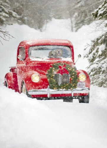 Avanti Christmas Cards, Old Fashioned Truck, 10 Count