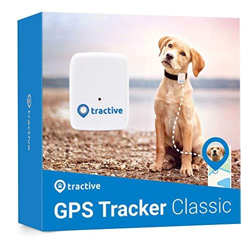 Tractive GPS-Hunde-Tracker der Peilsender für Haustiere mit Abo. Hund-GPS-Halsband-Erweiterung wasserdicht