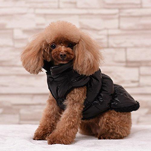Rantow Autunno Inverno Cane di Cane da Compagnia, Caldo Cappotto, 7 Colori Pet Classico Outwear Giù Giacca per Teddy, Yorkshire Terrier, Chihuahua, Po