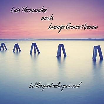 Luis Hermandez Meets Lounge Groove Avenue