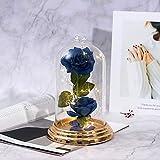 shirylzee Ewige Rose Blume Rose im Glas, Die Schöne und das Biest Rose in Glaskuppel Künstlich mit LED-Licht für Hochzeit Dekor Valentinstag Muttertag Jubiläum Hochzeitsgeschenk Kit (Blau)
