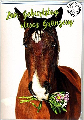 Touch Grußkarte lachendes Pferd, Geburtstagskarte mit Musik auf Berührung - Pferde