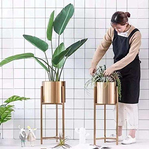 LYQZ Nordic Eisen Blume Ständer Moderne Boden-Stil Goldenen Wohnzimmer Dekoration Blume Rack Haus Pflanze Blumentopf Rahmen Balkon Display Regal (größe : 22 * 22 * 90cm) - 7