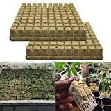 flyingx Rockwool Soilless Kultursubstrat Landwirtschaftliche Setzlinge Rockwool Sheet Block Propagation Cloning Seed Raising Hydroponic 25 25 40MM -