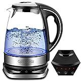 QUEENSENSE Wasserkocher Glas Teekocher mit Temperatureinstellung(40-100) Grad Kettle LED BPA Frei Temperaturstufen 1.7L Borosilikatglas Teekessel 2200W