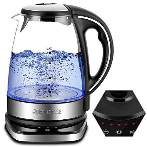 QUEENSENSE Hervidor de agua de cristal con ajuste de temperatura (40 – 100), sin BPA, niveles de temperatura, 1,7 l, vidrio de borosilicato, tetera, 2200 W
