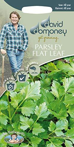 Portal Cool David Domoney Dépassez-vous Persil plat feuilles Graines