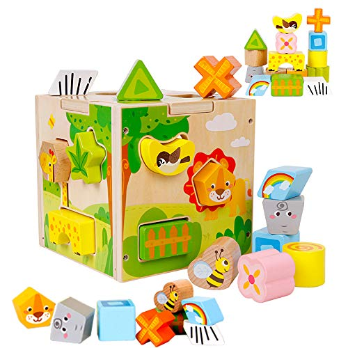 bopoobo Shape Sorter Wooden Toys for Toddlers 1-3 Year Old,Cartoon Animals Montessori Baby Activity Center Cube Toys Locks for Toddlers,Baby Creative Puzzle Toy Gift