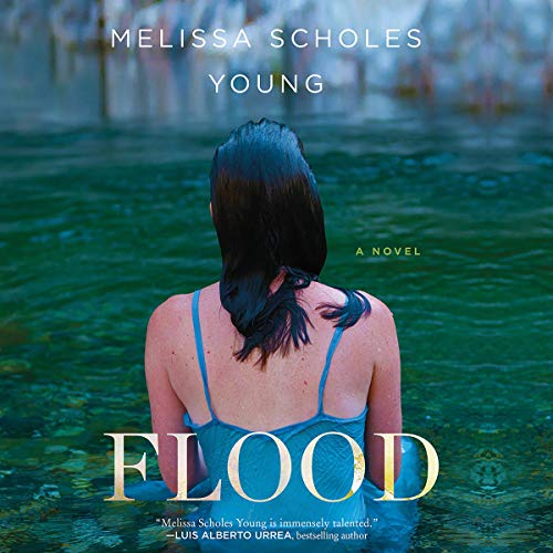 Flood     A Novel              By:                                                                                                                                 Melissa Scholes Young                               Narrated by:                                                                                                                                 Hallie Ricardo                      Length: 8 hrs and 54 mins     3 ratings     Overall 3.7