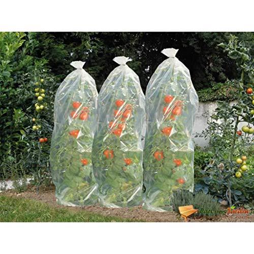 Nature Cobertura plástica para plantações de tomates 1500 x 50 cm