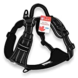 CUDDLY PET, Dog Harness No Pull, Walking Pet Harness with 2 Metal Rings