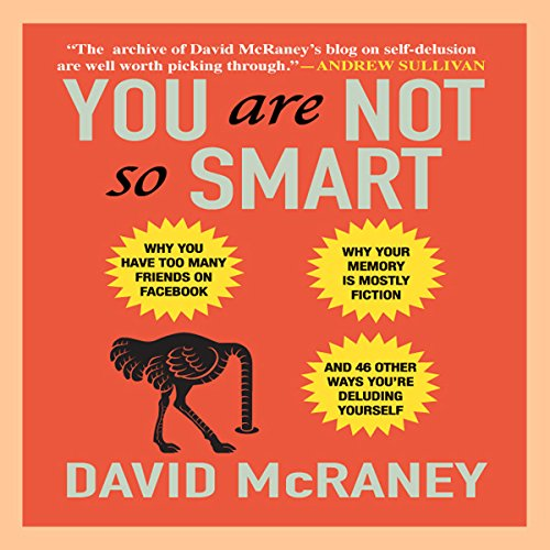 You Are Not So Smart audiobook cover art