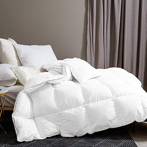 Dorrin Nessin Goose Down Comforter King Size Lightweight Duvet Insert for All Seasons, 100% Cotton Fabric Down Proof with 8 Tabs, 600TC 600+ Fill Power