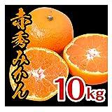 みかん 和歌山県産 赤秀みかん 完熟 甘い 選別済 (10kg) ※お歳暮 のし対応可能