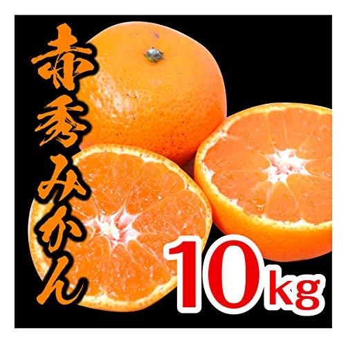 みかん 和歌山県産 赤秀みかん 完熟 送料無料 産地直送 甘い 選別済 (10kg)