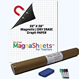 Jumbo Sized Dry Erase Magnetic Graph Paper (22'W x 28'H) for Whiteboard   4 Pens, 2 Magnets, 1 Storage Tube   Classroom Teachers, Education, Algebra, Geometry, Statistics