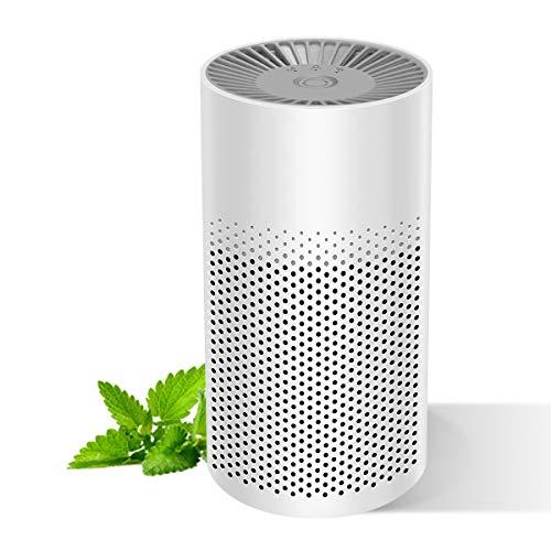 Mini-Air Purifier for Home Bedroom Office Desktop Pet room, Safety Mini Air Cleaner,3-in-1 True HEPA...