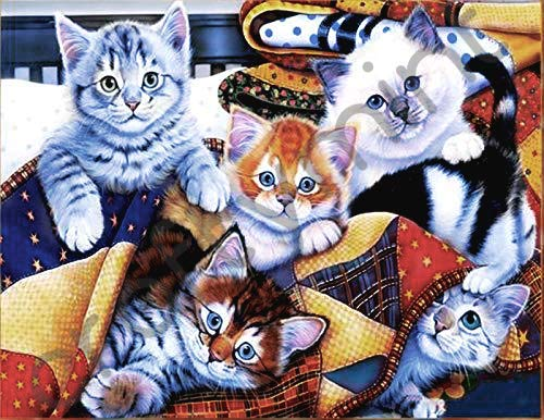 Diamond Painting Kits for Adults and Kids by Craftymint - Large Premium Full Drill 5D Diamond Art - Relax and Paint with Diamonds - Kit Includes All Tools and Accessories (Square, Cuddly Cats)