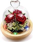 StillCool Naturelle éTernelle Rose Rose Rouge Magique, Roses jamais fanées, Fleurs Immortelles Haut de Gamme, Fleurs de la Vie éternelle pour Les Amoureux, Anniversaire, Noël, Cadeau de Vacances