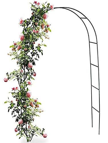 QLS Gartenbogen Pergola Rosenbogen Arch 4 Ankers 240cm Metall Dekorstar Garden Line