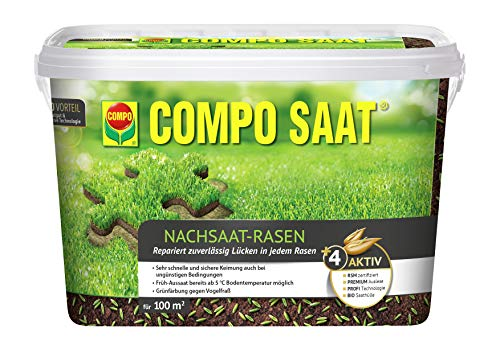 Compo SAAT Nachsaat-Rasen Bild