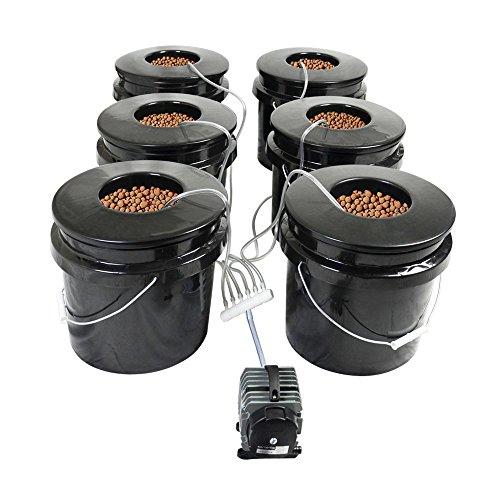 HTG Supply DWC Hydroponic System