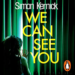 We Can See You audiobook cover art