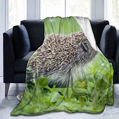 Manta de forro polar de 127 x 152 cm, color verde y verde con agujas de hierba de verano, fondo brillante, para cama o sofá, oficina, camping