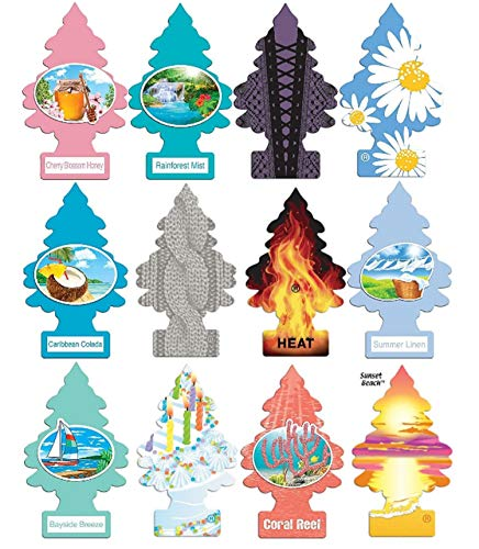 Little Trees Home and Car Air Fresheners 12 Pack Vacation