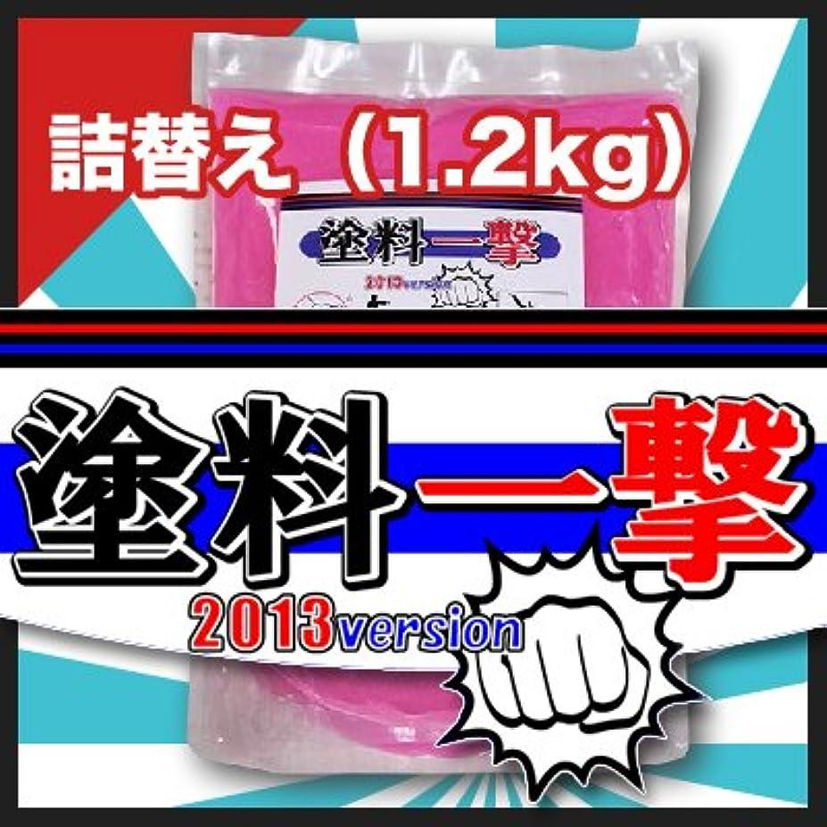 後世死の顎笑D.Iプランニング 塗料一撃 2013 Version 詰め替え (1.2kg)
