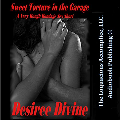 Sweet Torture in the Garage cover art